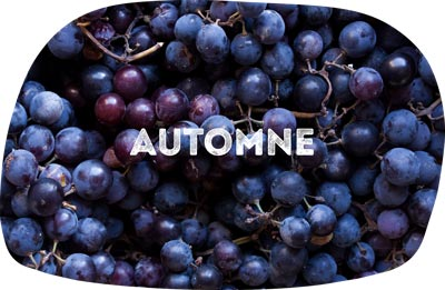 raisins automne