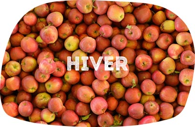 pomme hiver